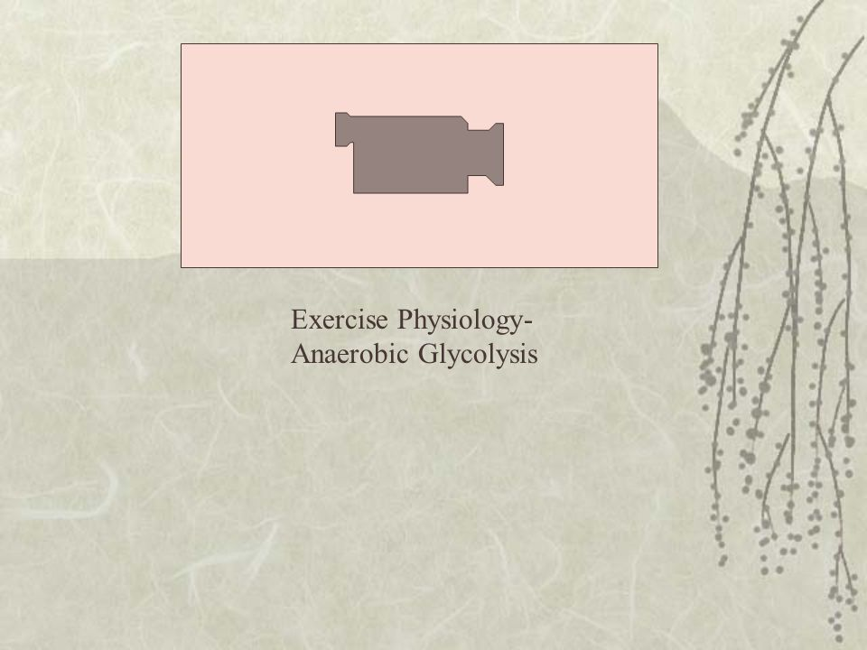 Exercise Physiology-Anaerobic Glycolysis