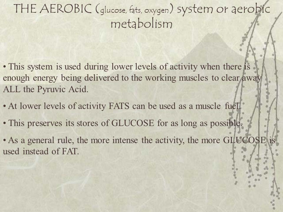 THE AEROBIC (glucose, fats, oxygen) system or aerobic metabolism