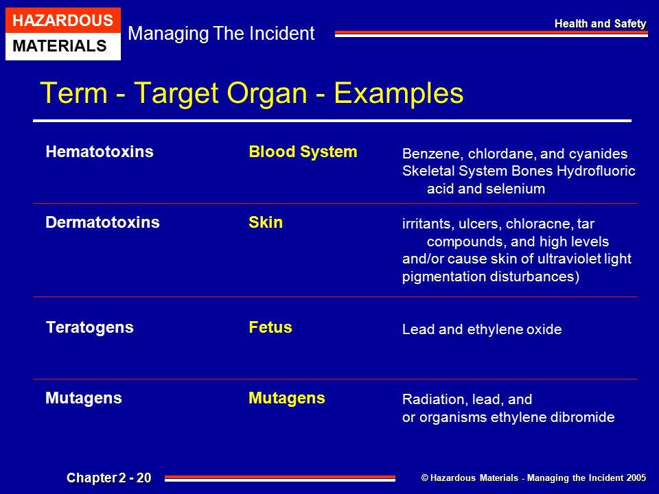 Term - Target Organ - Examples