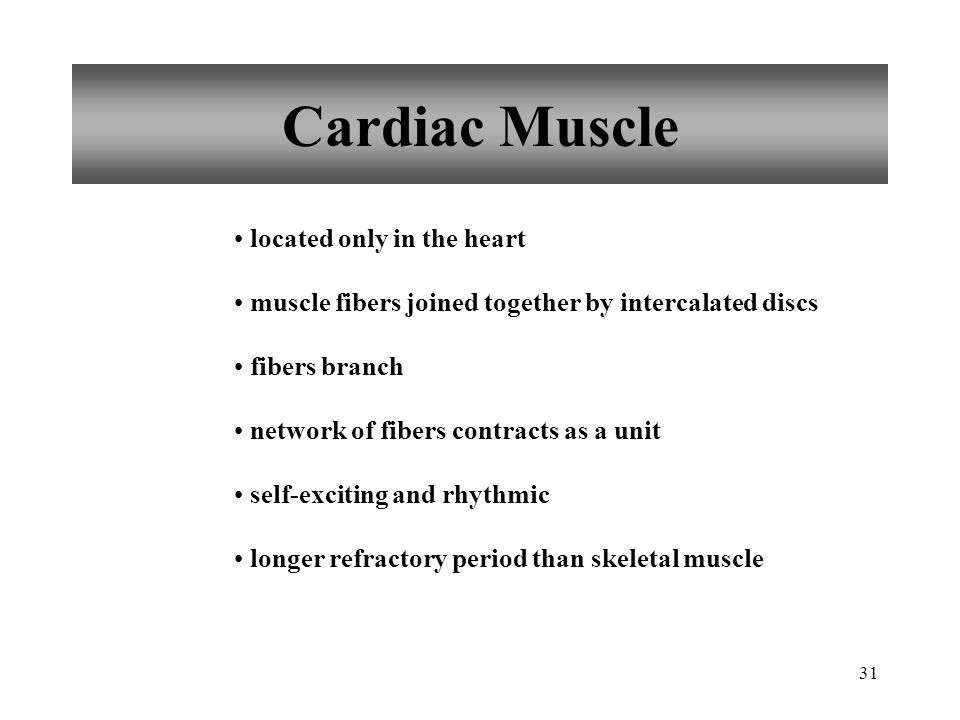 Cardiac Muscle located only in the heart