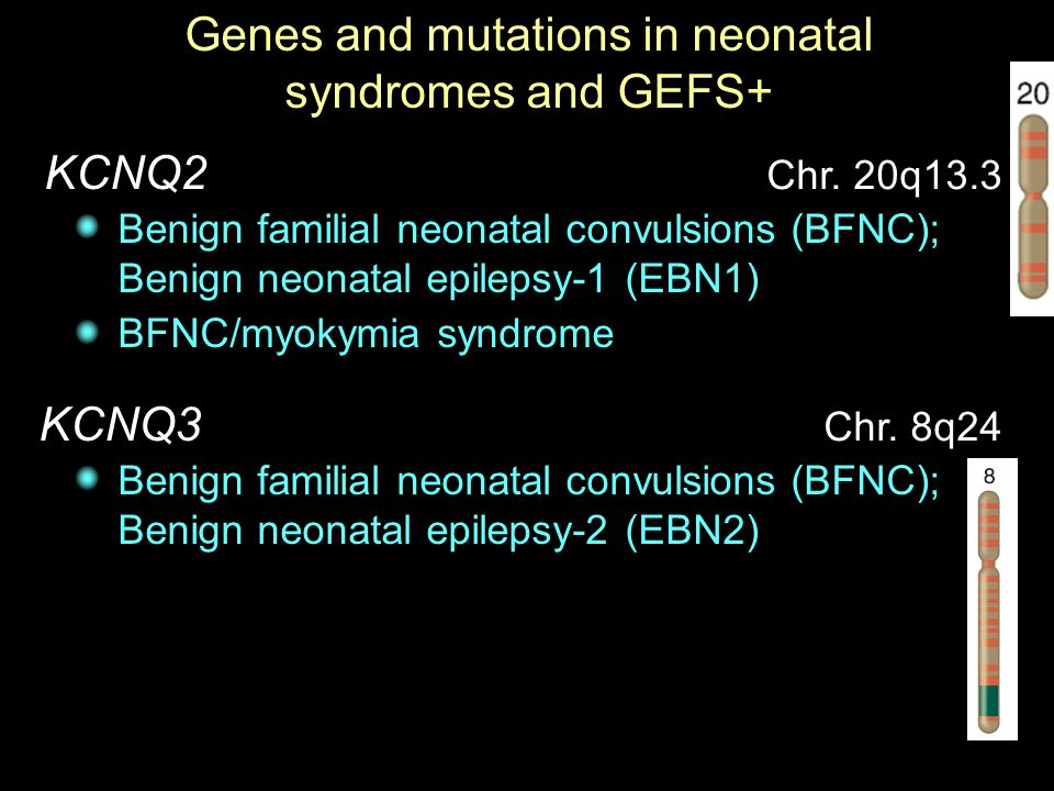 Genes and mutations in neonatal syndromes and GEFS+
