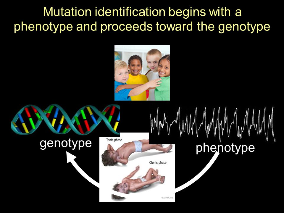 Mutation identification begins with a