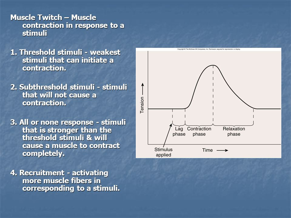 Muscle Twitch – Muscle contraction in response to a stimuli