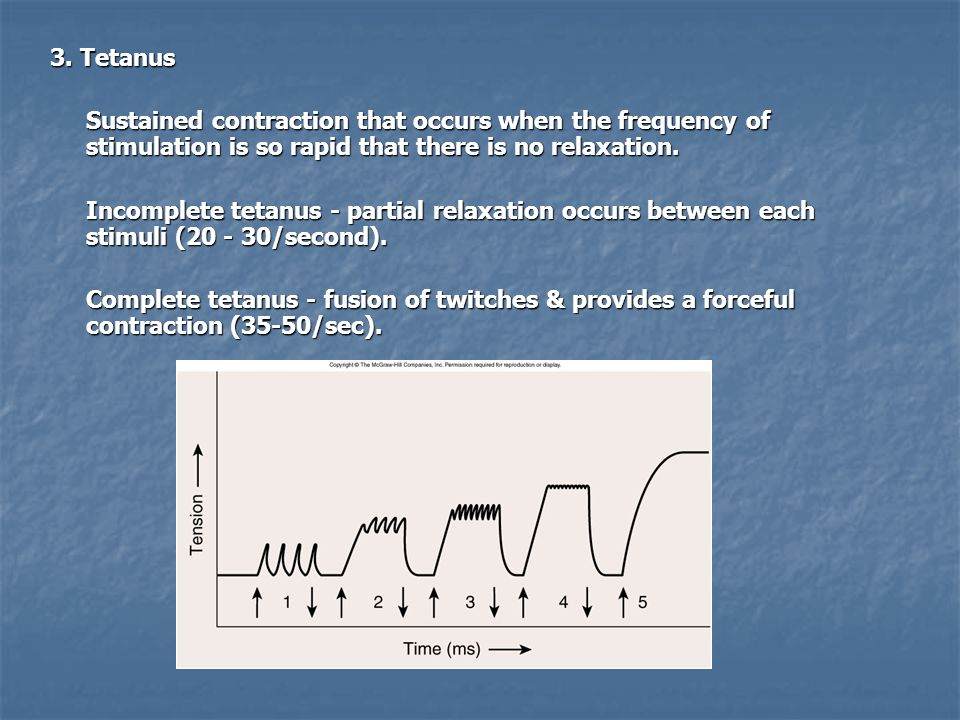 3. Tetanus Sustained contraction that occurs when the frequency of stimulation is so rapid that there is no relaxation.