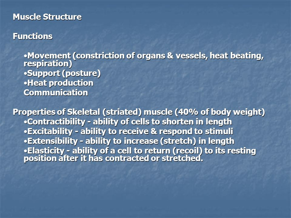 Muscle Structure Functions. •Movement (constriction of organs & vessels, heat beating, respiration)
