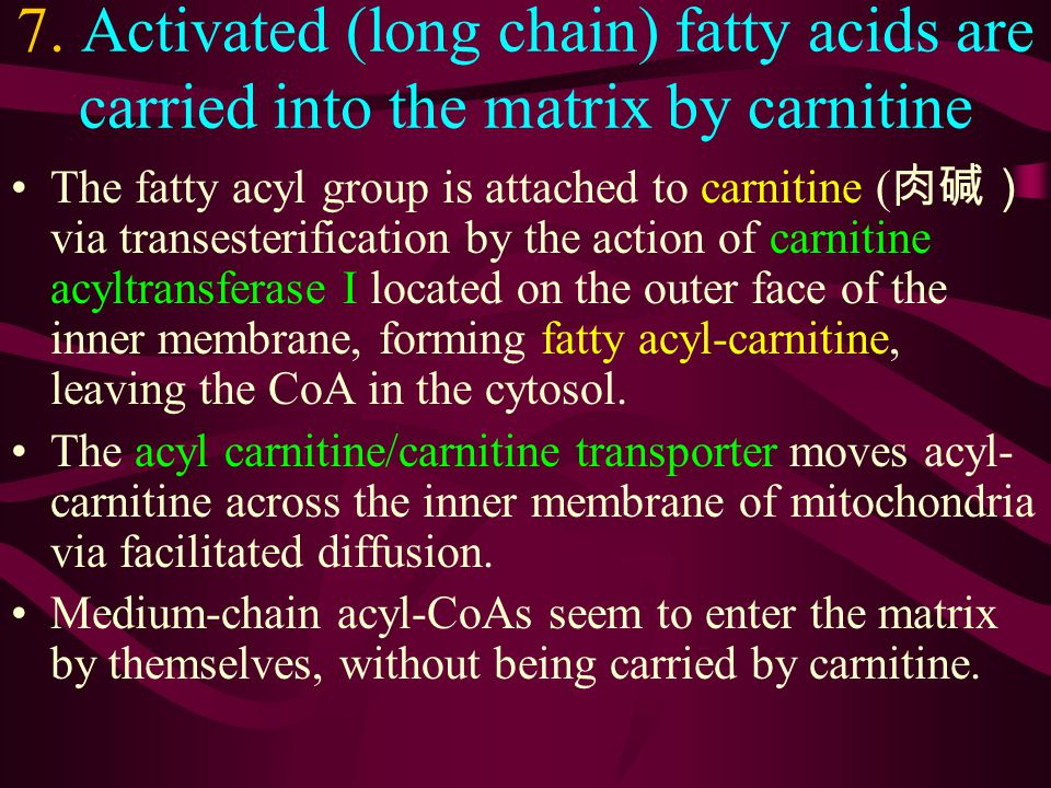 7. Activated (long chain) fatty acids are carried into the matrix by carnitine