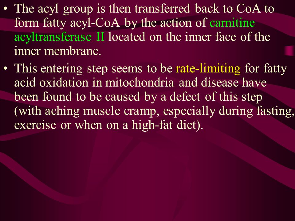 The acyl group is then transferred back to CoA to form fatty acyl-CoA by the action of carnitine acyltransferase II located on the inner face of the inner membrane.