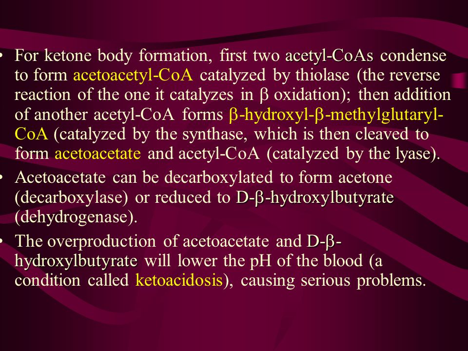For ketone body formation, first two acetyl-CoAs condense to form acetoacetyl-CoA catalyzed by thiolase (the reverse reaction of the one it catalyzes in b oxidation); then addition of another acetyl-CoA forms b-hydroxyl-b-methylglutaryl-CoA (catalyzed by the synthase, which is then cleaved to form acetoacetate and acetyl-CoA (catalyzed by the lyase).