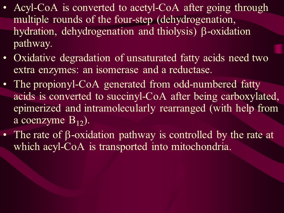 Acyl-CoA is converted to acetyl-CoA after going through multiple rounds of the four-step (dehydrogenation, hydration, dehydrogenation and thiolysis) b-oxidation pathway.