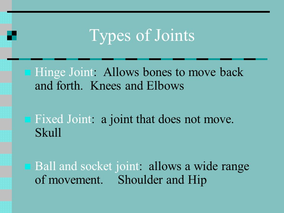 Types of Joints Hinge Joint: Allows bones to move back and forth. Knees and Elbows. Fixed Joint: a joint that does not move. Skull.