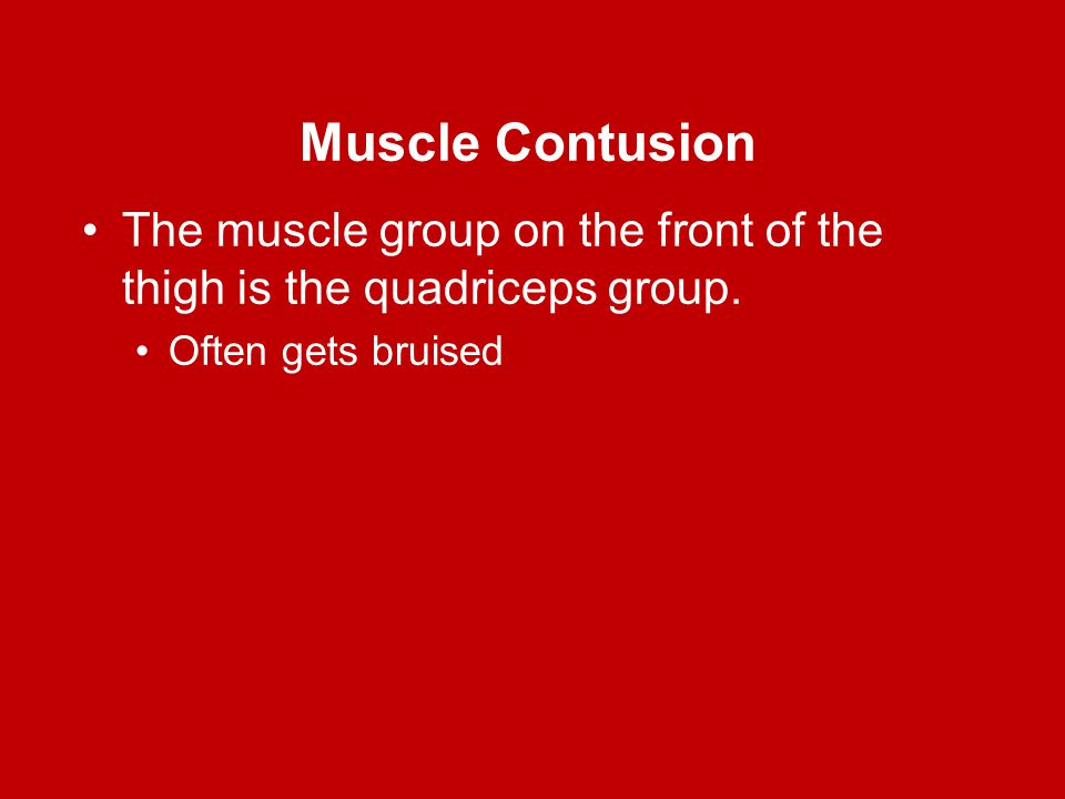 Muscle Contusion The muscle group on the front of the thigh is the quadriceps group.