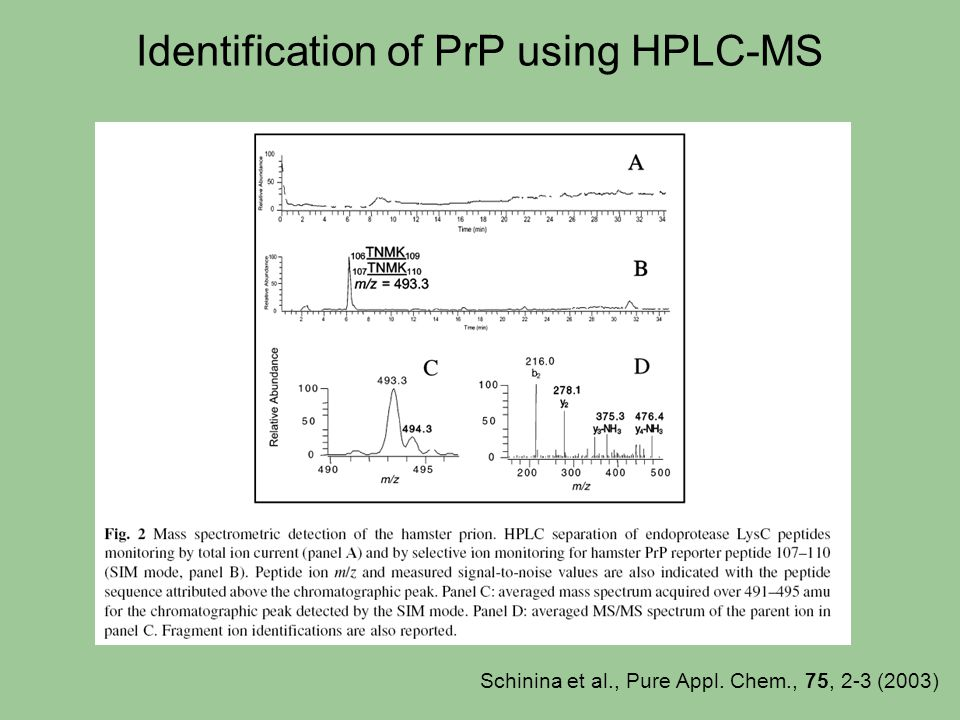 Identification of PrP using HPLC-MS