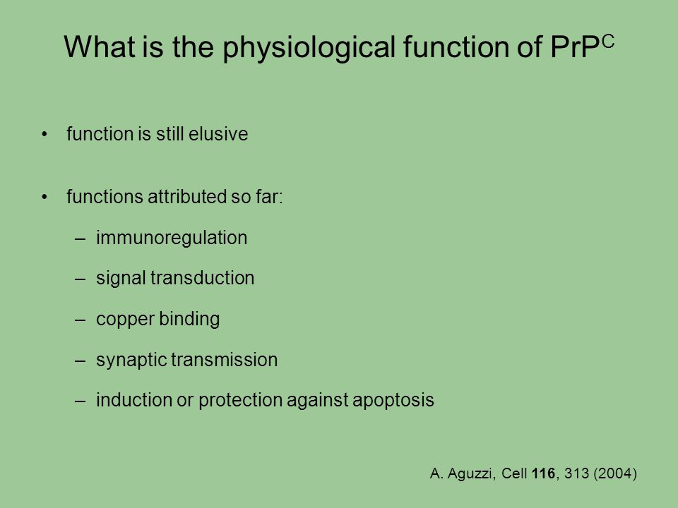 What is the physiological function of PrPC