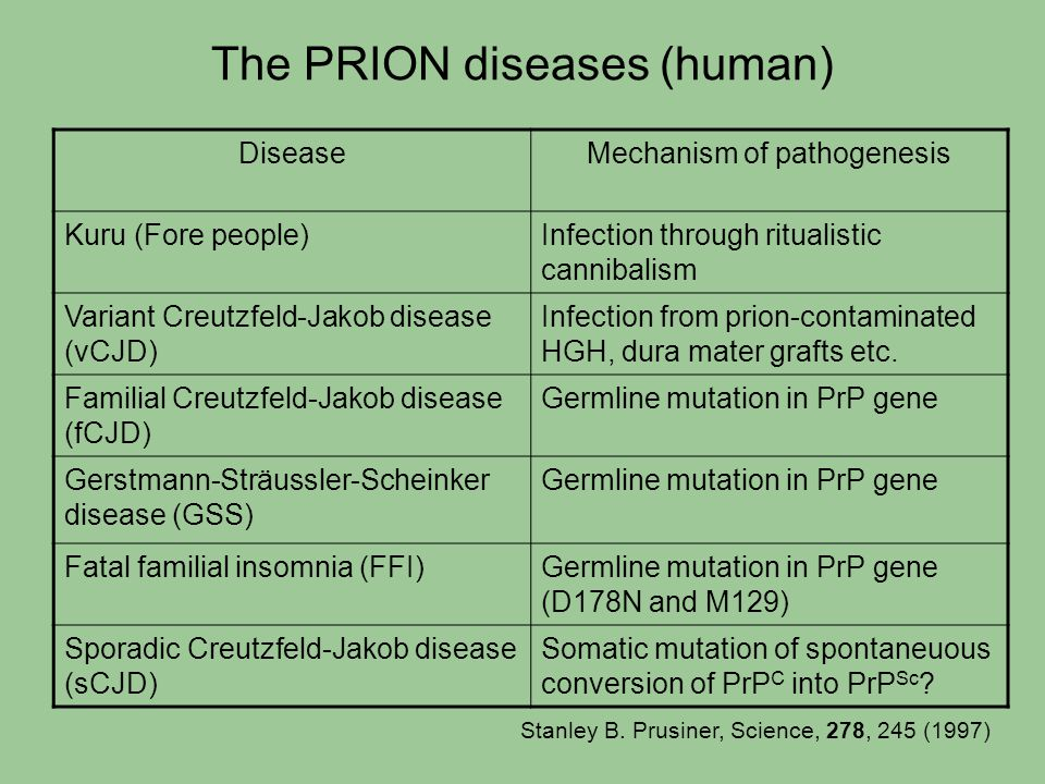 The PRION diseases (human)