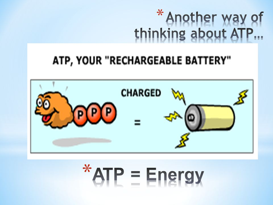 Another way of thinking about ATP…