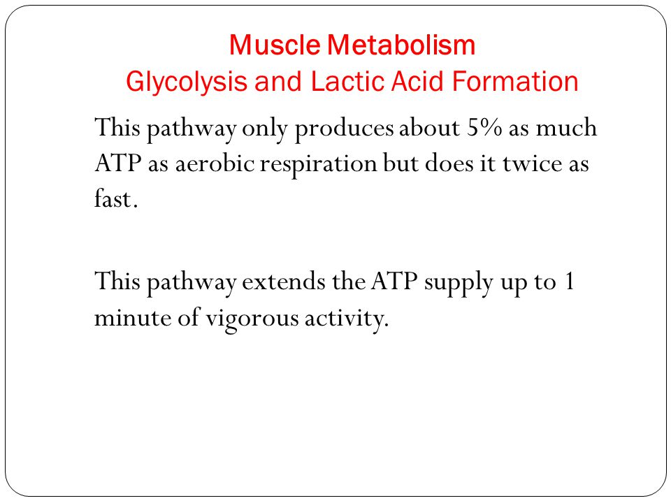 Muscle Metabolism Glycolysis and Lactic Acid Formation