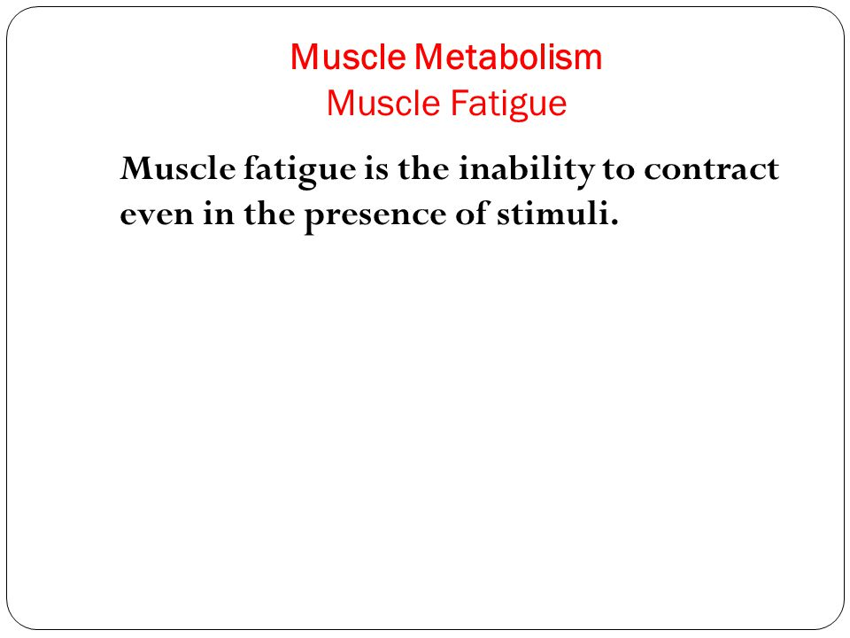 Muscle Metabolism Muscle Fatigue