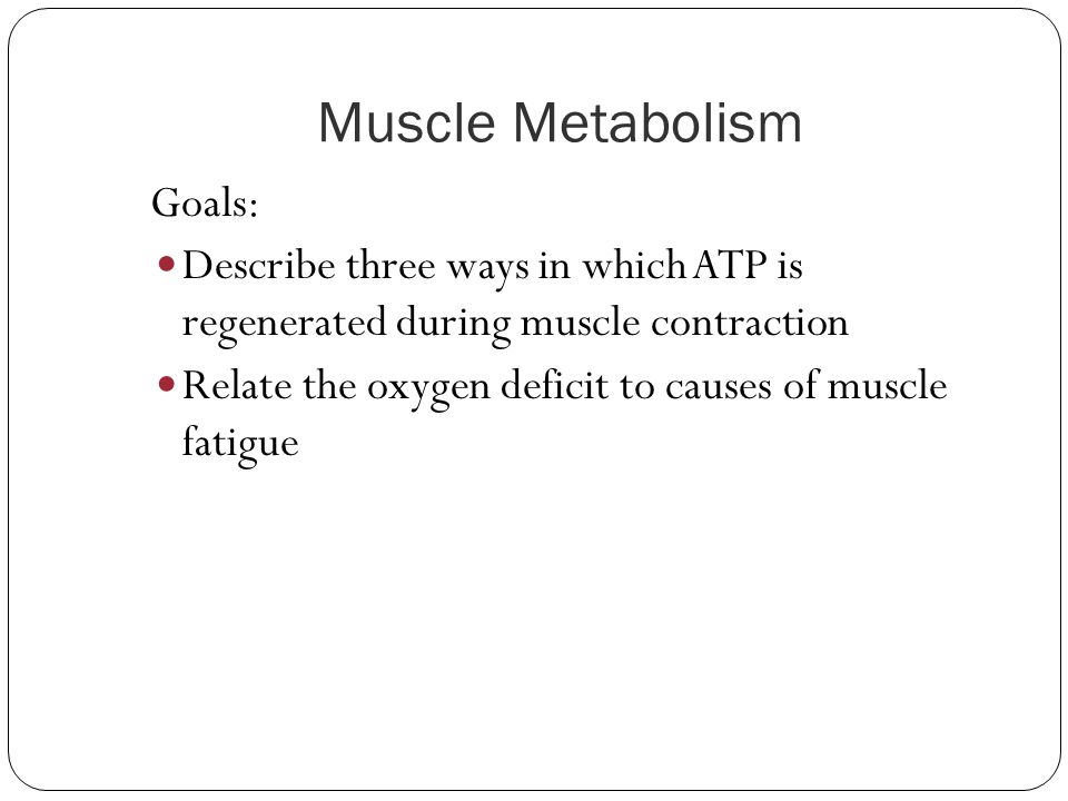 Muscle Metabolism Goals: Describe three ways in which ATP is regenerated during muscle contraction.