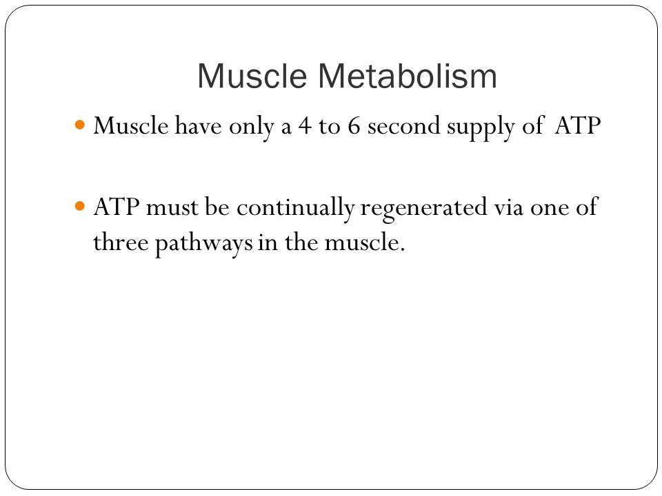 Muscle Metabolism Muscle have only a 4 to 6 second supply of ATP