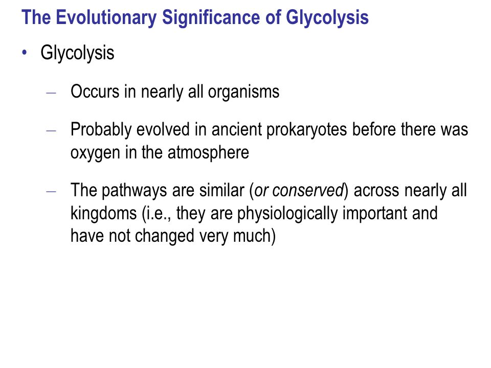 The Evolutionary Significance of Glycolysis