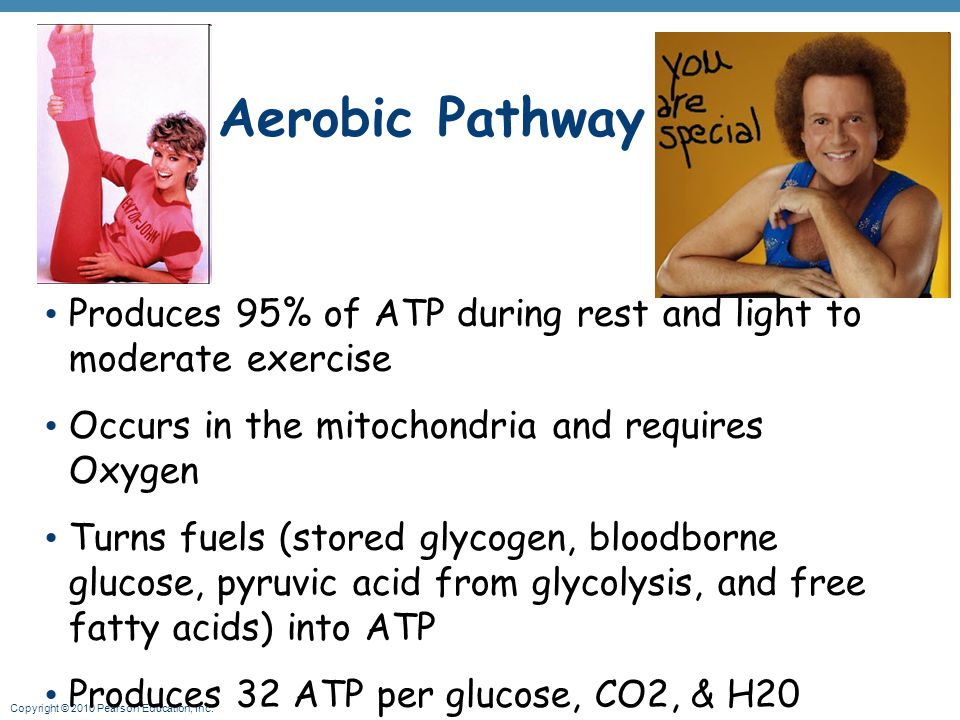 Aerobic Pathway Produces 95% of ATP during rest and light to moderate exercise. Occurs in the mitochondria and requires Oxygen.