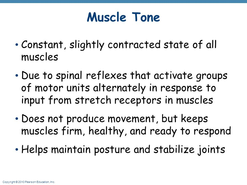 Muscle Tone Constant, slightly contracted state of all muscles