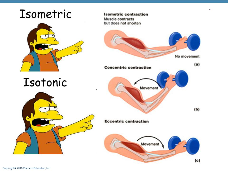Isometric Isotonic