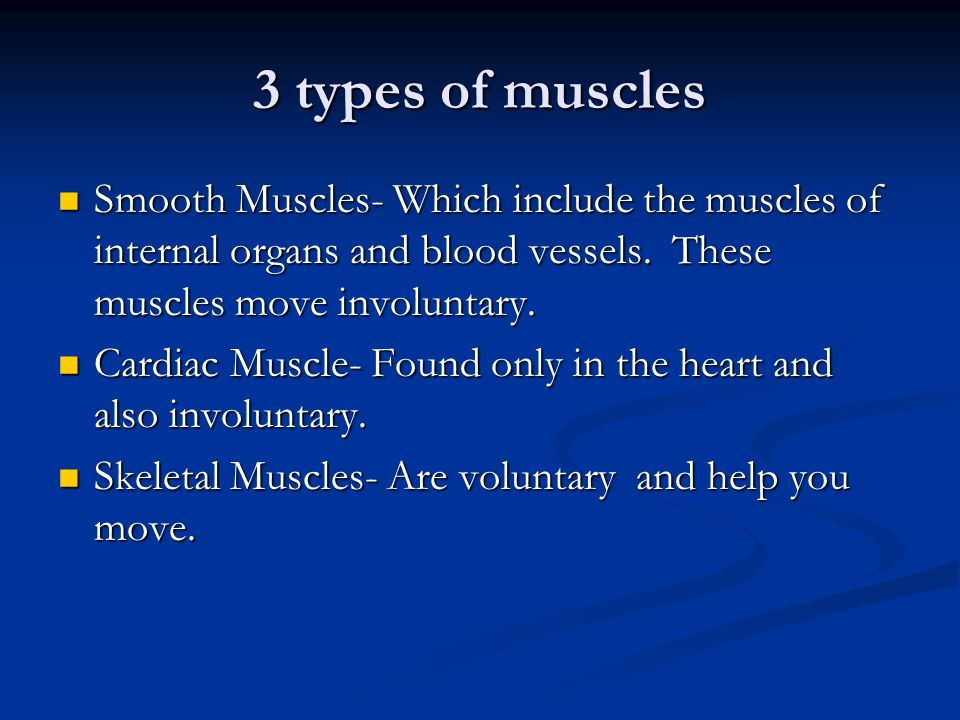 3 types of muscles Smooth Muscles- Which include the muscles of internal organs and blood vessels. These muscles move involuntary.