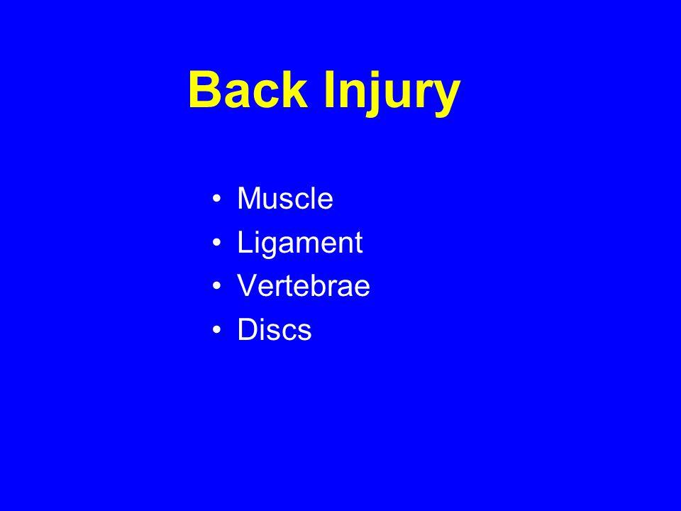 Back Injury Muscle Ligament Vertebrae Discs