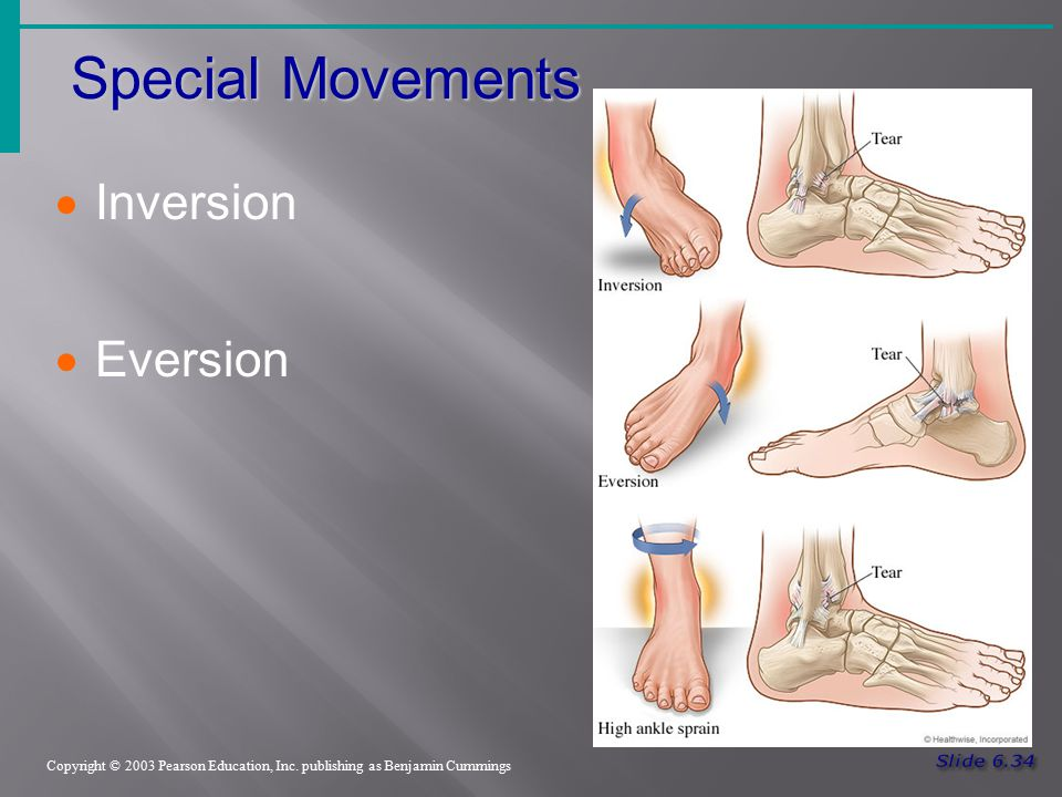 Special Movements Inversion Eversion Slide 6.34