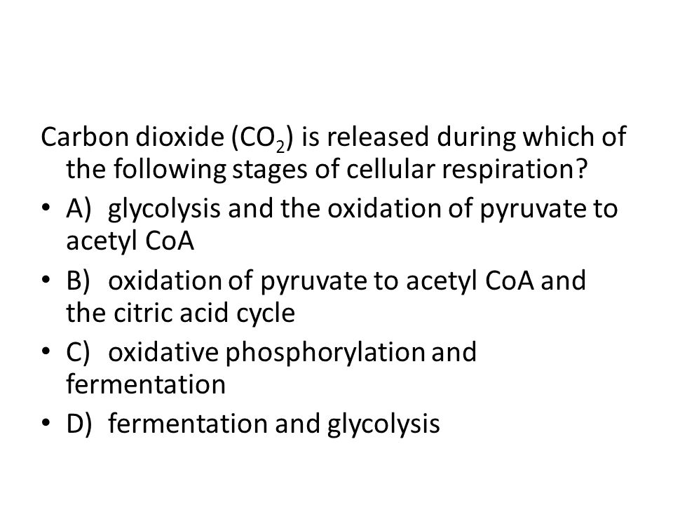 Carbon dioxide (CO2) is released during which of the following stages of cellular respiration