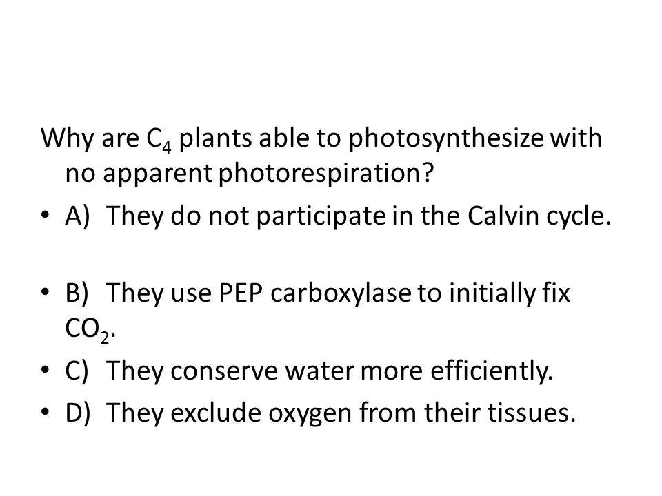 Why are C4 plants able to photosynthesize with no apparent photorespiration