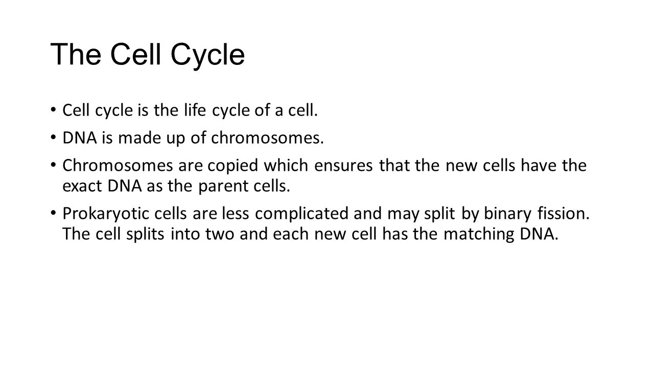 The Cell Cycle Cell cycle is the life cycle of a cell.