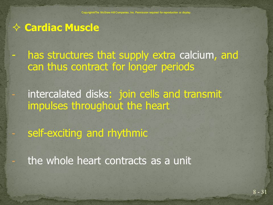 self-exciting and rhythmic the whole heart contracts as a unit