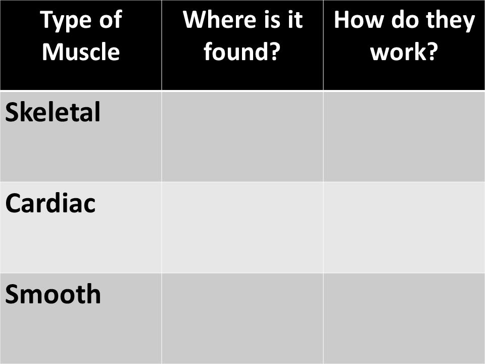Skeletal Cardiac Smooth Type of Muscle Where is it found