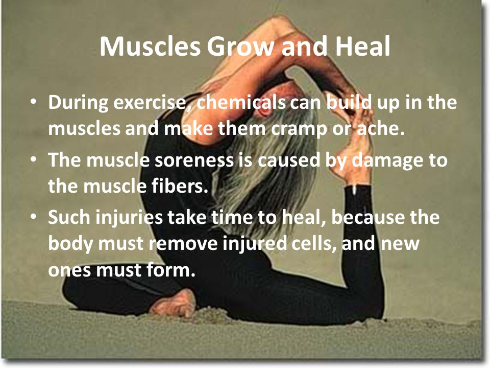 Muscles Grow and Heal During exercise, chemicals can build up in the muscles and make them cramp or ache.