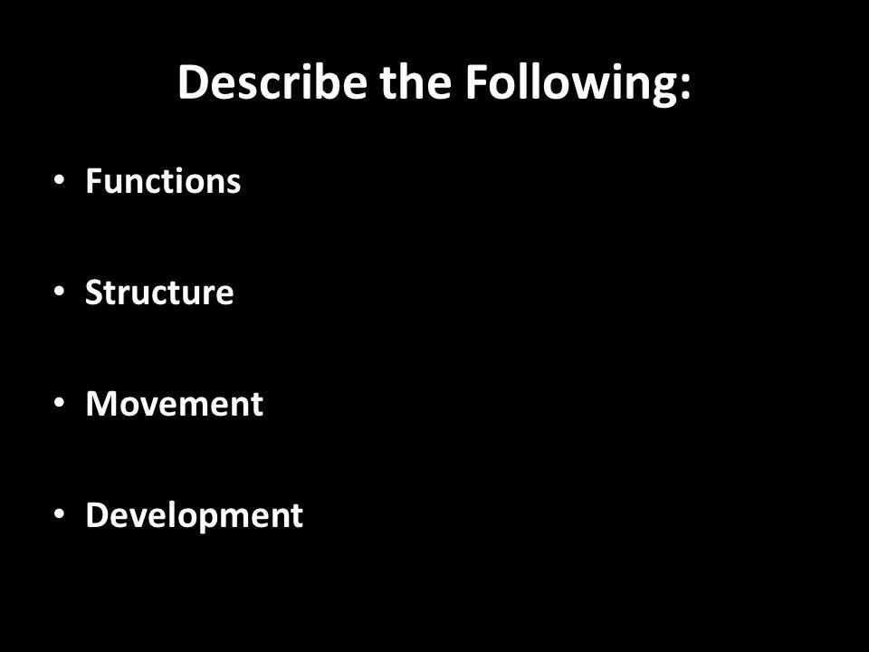 Describe the Following: