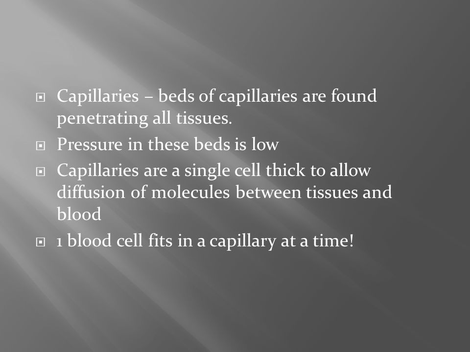 Capillaries – beds of capillaries are found penetrating all tissues.