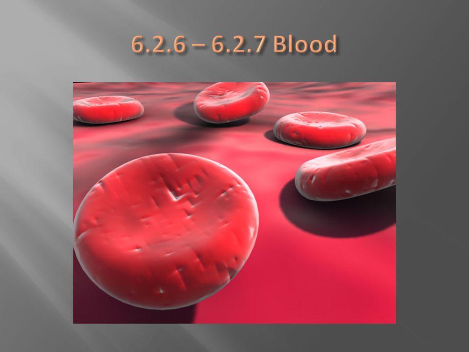 6.2.6 – 6.2.7 Blood