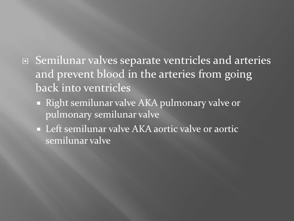 Semilunar valves separate ventricles and arteries and prevent blood in the arteries from going back into ventricles
