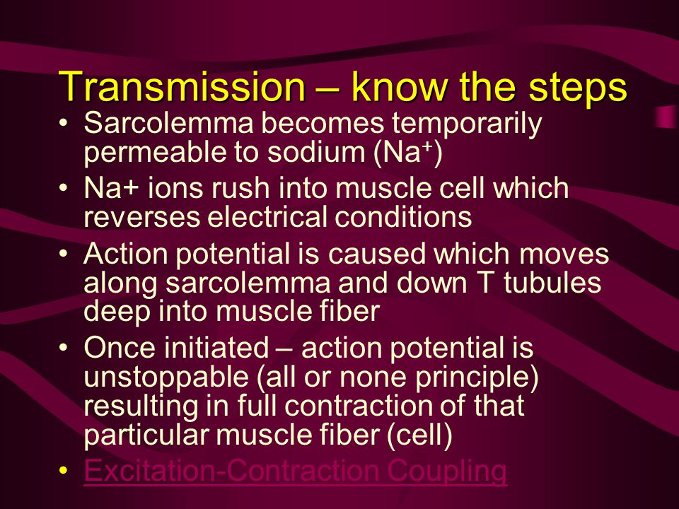 Transmission – know the steps