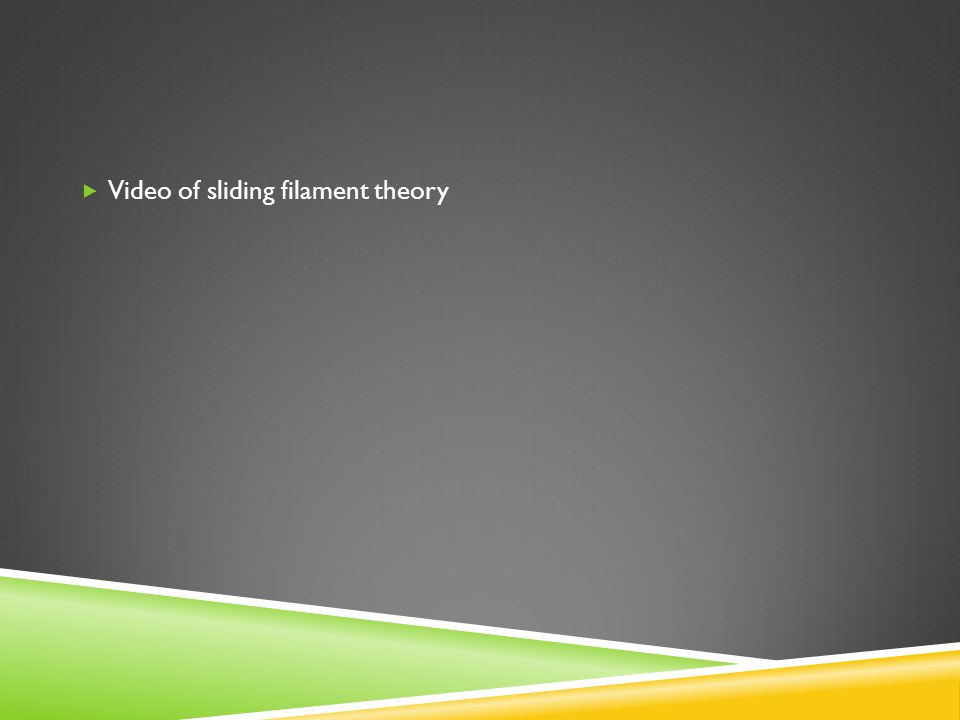 Video of sliding filament theory