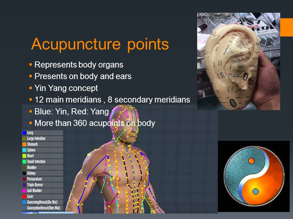 Acupuncture points Represents body organs Presents on body and ears