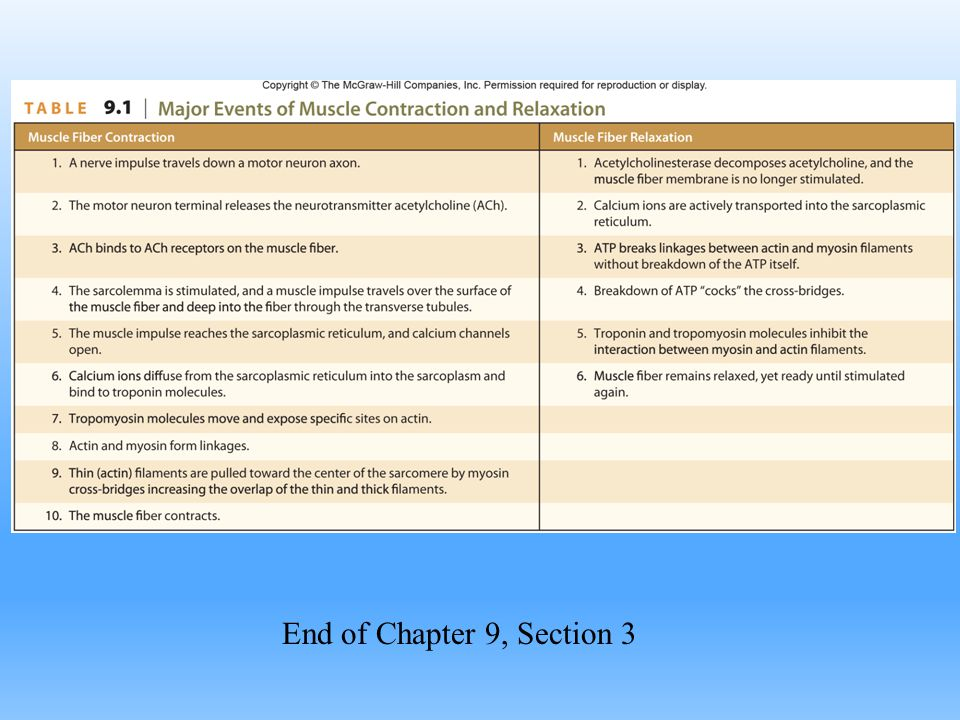 End of Chapter 9, Section 3