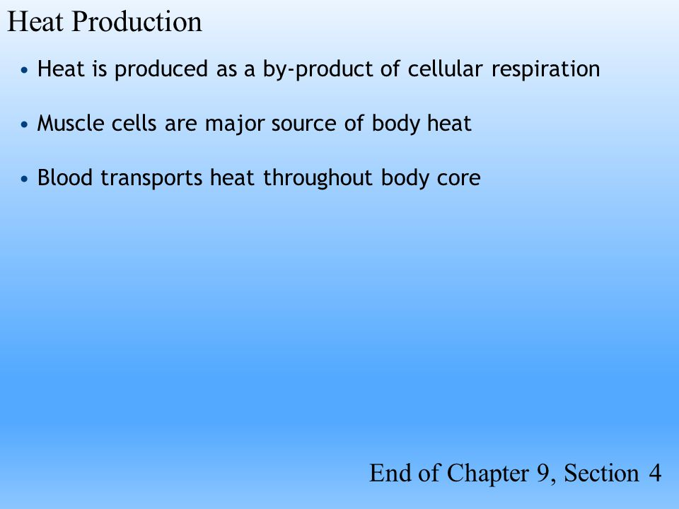 Heat Production End of Chapter 9, Section 4