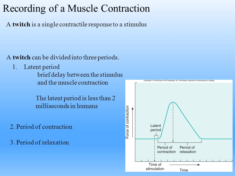 Recording of a Muscle Contraction