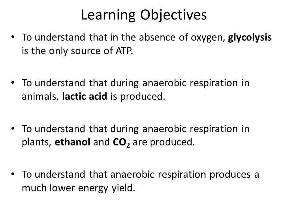 Learning Objectives To understand that in the absence of oxygen, glycolysis is the only source of ATP.