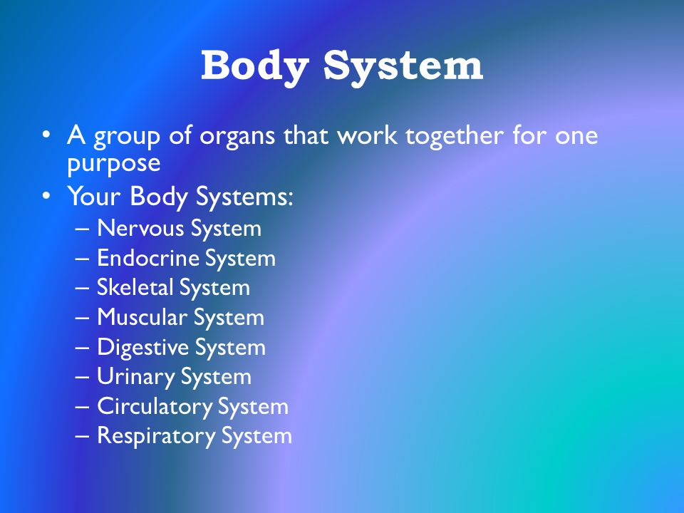 Body System A group of organs that work together for one purpose