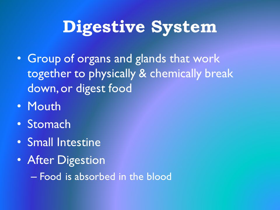 Digestive System Group of organs and glands that work together to physically & chemically break down, or digest food.