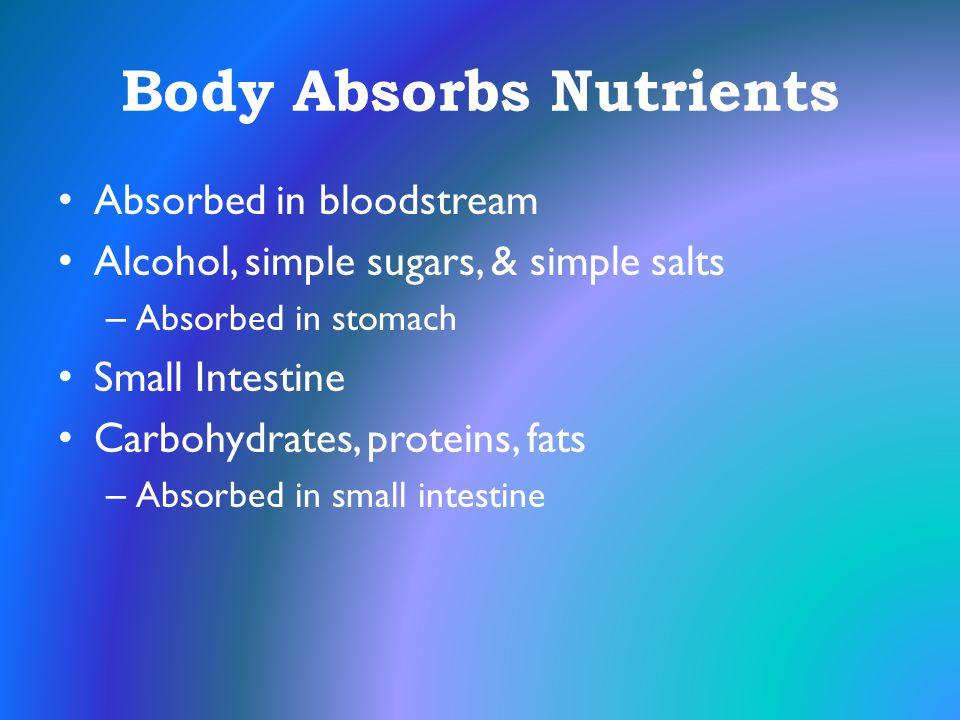 Body Absorbs Nutrients